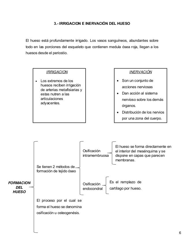 Hermosa Diagrama De Pie Esquelético Ideas - Anatomía de Las ...