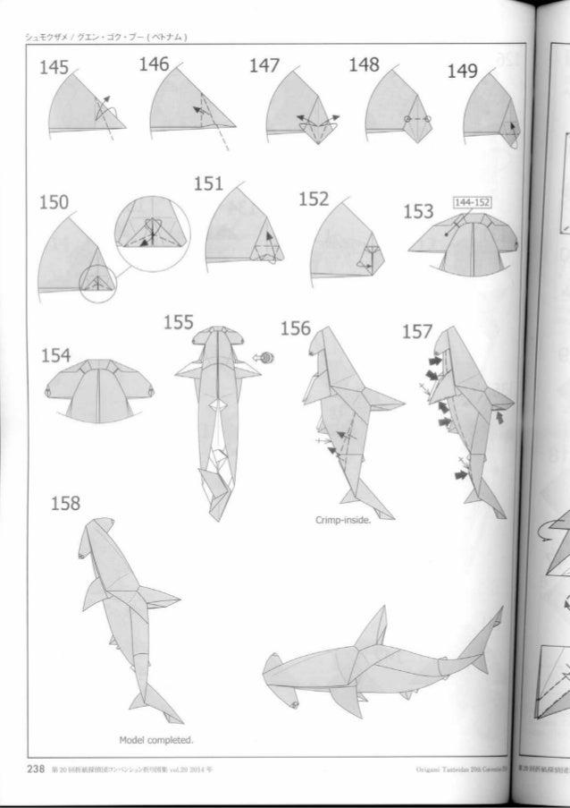 Diagram Hammerhead Shark Nguyen Ngoc Vusuper