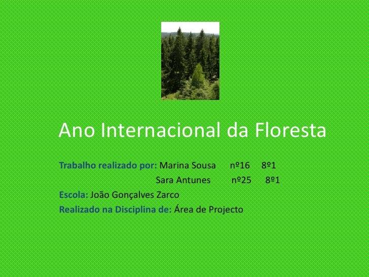 Ano Internacional da Floresta<br />Trabalho realizado por: Marina Sousa      nº16     8º1<br />                           ...