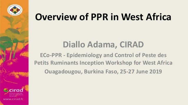 Overview of PPR in West Africa Diallo Adama, CIRAD ECo-PPR - Epidemiology and Control of Peste des Petits Ruminants Incept...