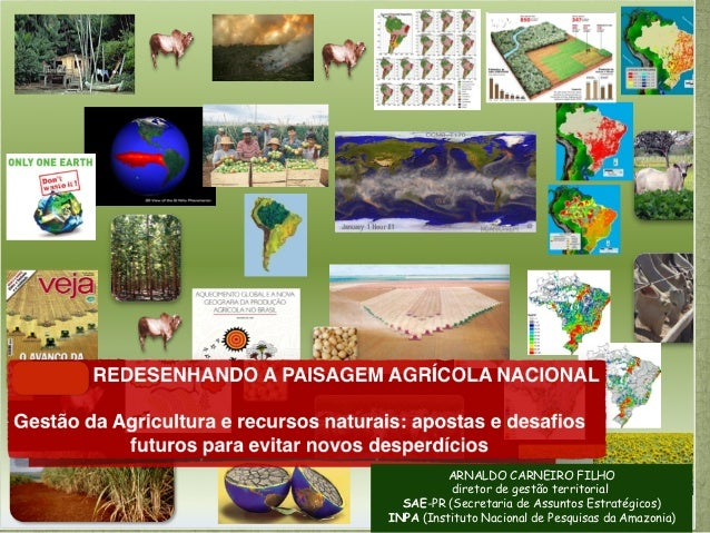 ARNALDO CARNEIRO FILHO          diretor de gestão territorial  SAE-PR (Secretaria de Assuntos Estratégicos)INPA (Instituto...