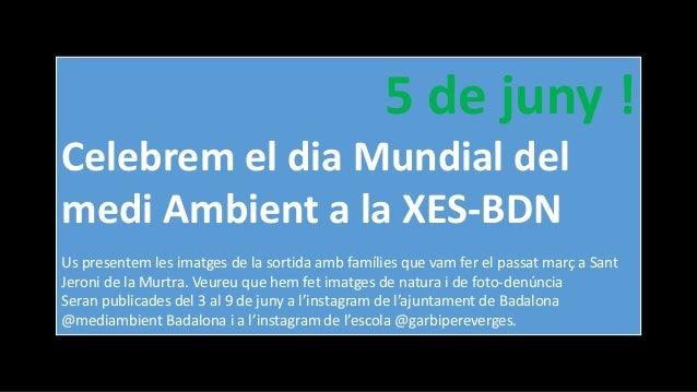 5 de juny ! Celebrem el dia Mundial del medi Ambient a la XES-BDN Us presentem les imatges de la sortida amb famílies que ...