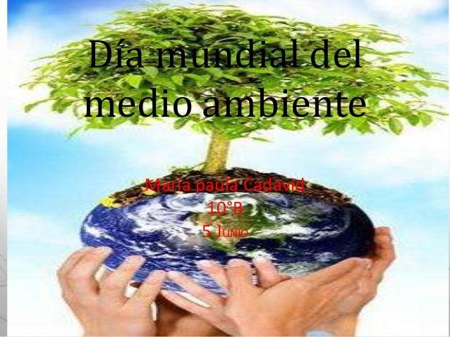 Día mundial delmedio ambienteMaría paula Cadavid10°B5 JUNIO