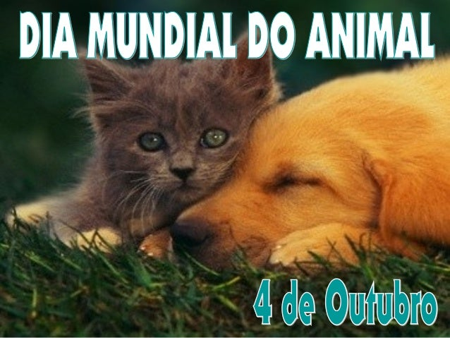 Dia Mundial do AnimalDia Mundial do Animal No dia 4 de Outubro comemora-se o Dia Mundial do Animal! Sabes como surgiu este...
