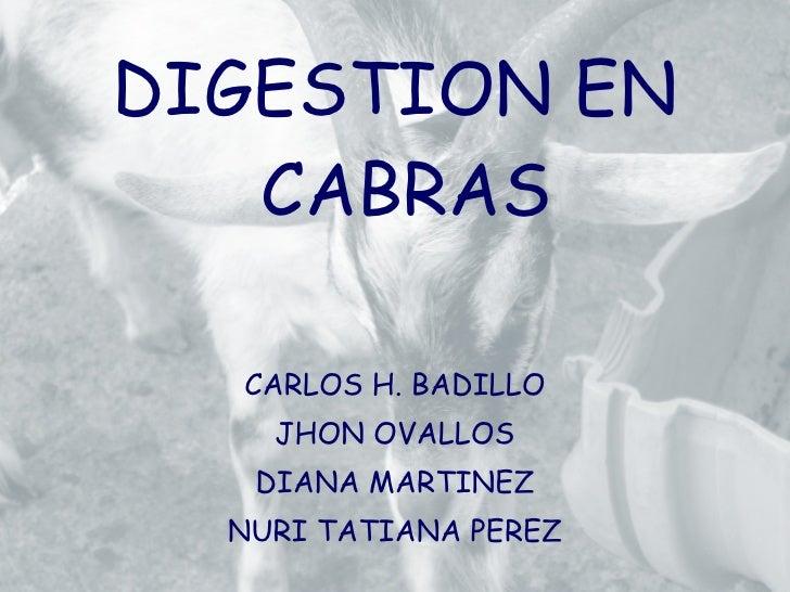 <ul><li>DIGESTION EN CABRAS </li></ul><ul><li>CARLOS H. BADILLO </li></ul><ul><li>JHON OVALLOS </li></ul><ul><li>DIANA MAR...