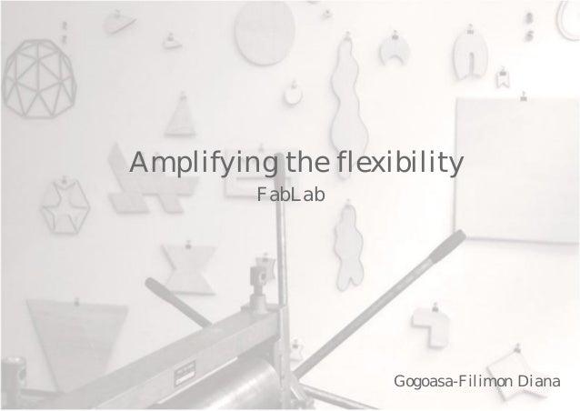 Amplifying the flexibility         FabLab                    Gogoasa-Filimon Diana