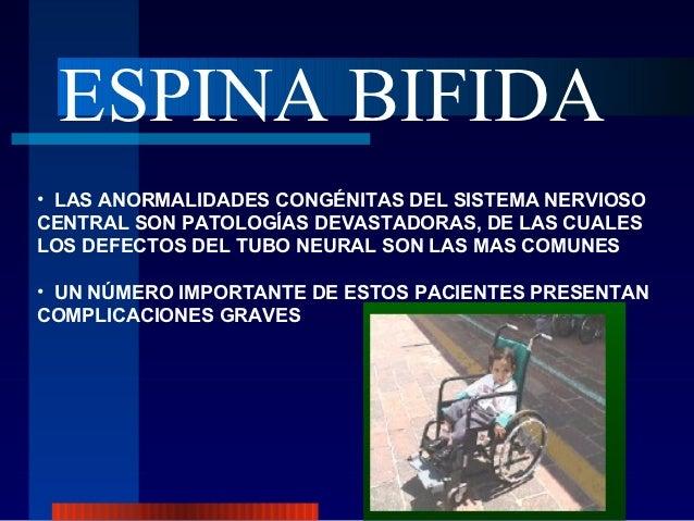 ESPINA BIFIDA• LAS ANORMALIDADES CONGÉNITAS DEL SISTEMA NERVIOSOCENTRAL SON PATOLOGÍAS DEVASTADORAS, DE LAS CUALESLOS DEFE...