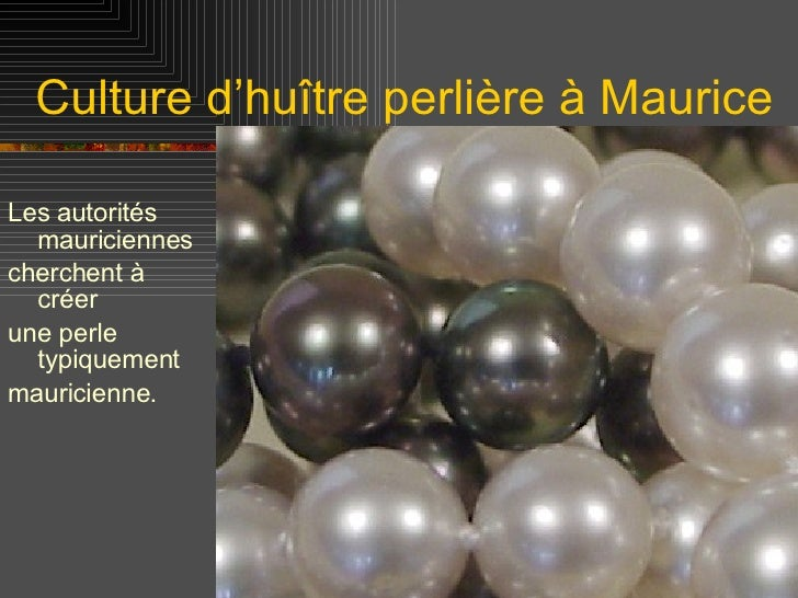 Culture d'huître perlière à Maurice <ul><li>Les autorités mauriciennes  </li></ul><ul><li>cherchent à créer  </li></ul><ul...