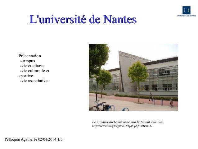 Pelloquin Agathe, le 02/04/2014 1/5 L'université de NantesL'université de Nantes Le campus du tertre avec son bâtiment cen...