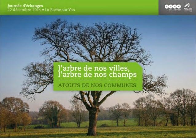 Didier MANDELLI Sénateur – Maire du Poiré-sur-Vie Commune 2 fleurs EXPOSÉ 1 : L'ARBRE GÉNÉRATEUR D'ÉCONOMIE ?