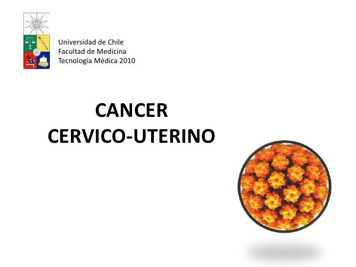 CANCER CERVICO-UTERINO<br />