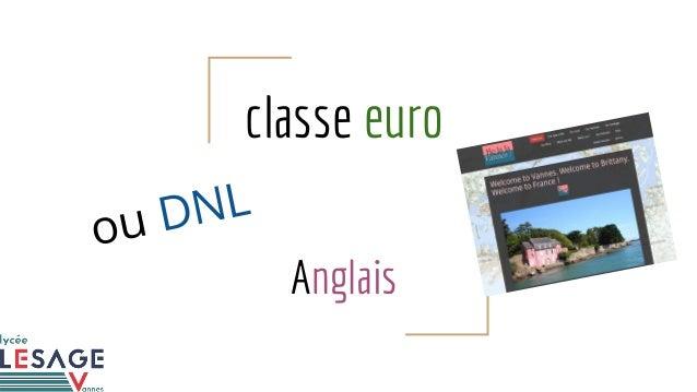 classe euro Anglais ou DNL