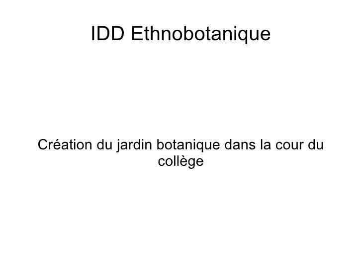 IDD Ethnobotanique     Création du jardin botanique dans la cour du                    collège