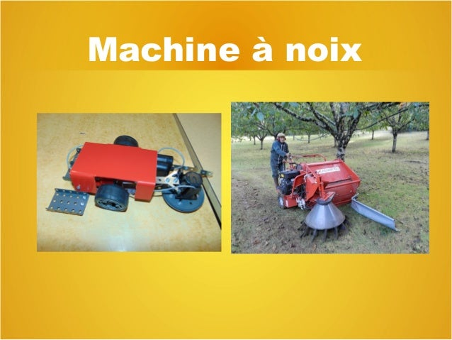 Machine à noix