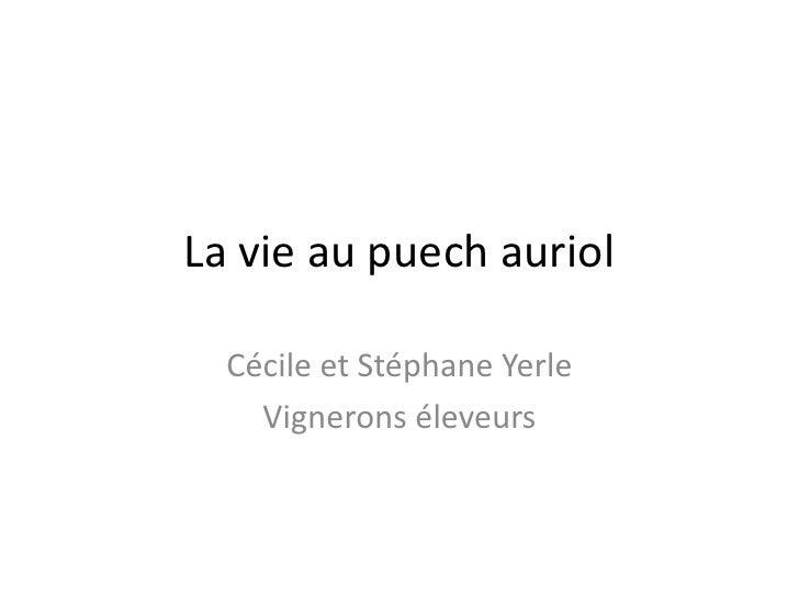 La vie au puechauriol<br />Cécile et Stéphane Yerle<br />Vignerons éleveurs<br />