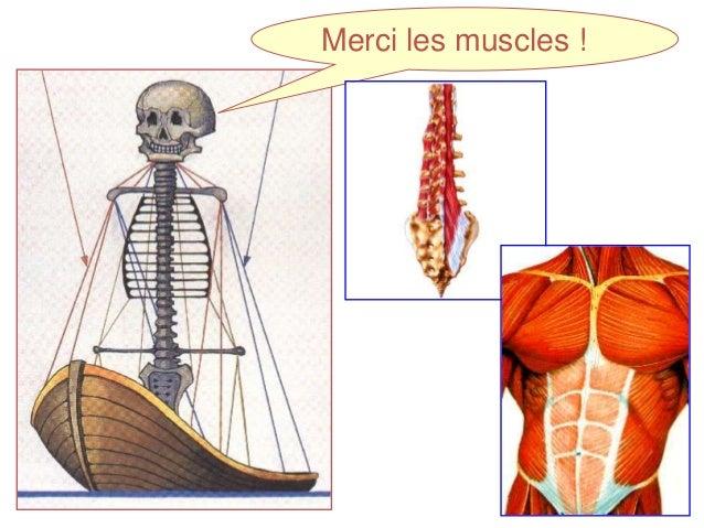 La douleur sous une gauche omoplate par derrière du dos
