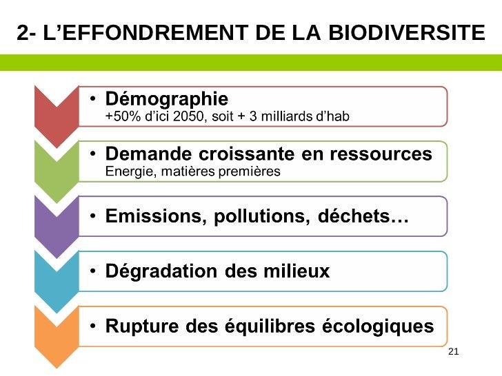 2- L'EFFONDREMENT DE LA BIODIVERSITE                                 21