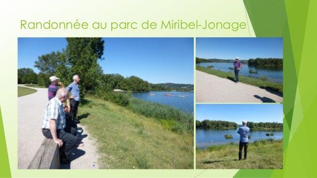 Randonnée au parc de Miribel-Jonage