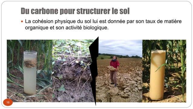 Du carbone pour structurer le sol 16  La cohésion physique du sol lui est donnée par son taux de matière organique et son...