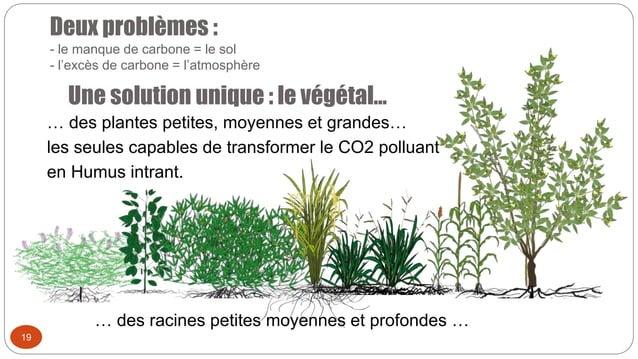 Deux problèmes : - le manque de carbone = le sol - l'excès de carbone = l'atmosphère Une solution unique : le végétal… 19 ...