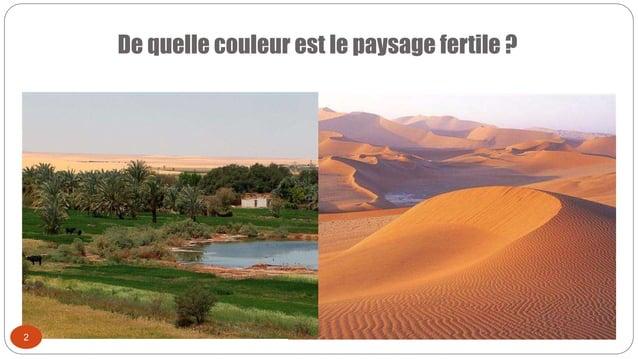 De quelle couleur est le paysage fertile ? 2