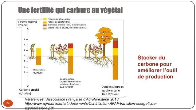 Une fertilité qui carbure au végétal 24 Stocker du carbone pour améliorer l'outil de production Références : Association F...
