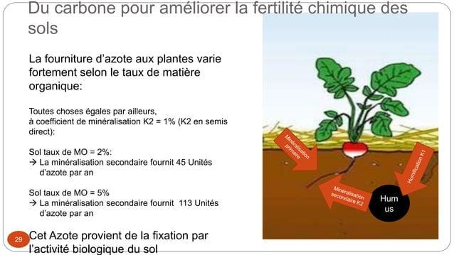 Hum us Du carbone pour améliorer la fertilité chimique des sols 29 La fourniture d'azote aux plantes varie fortement selon...