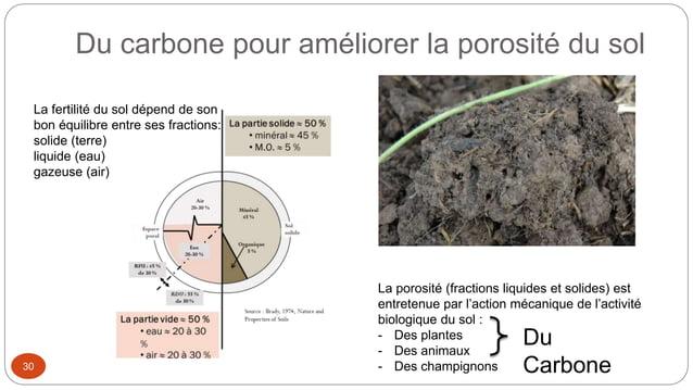Du carbone pour améliorer la porosité du sol 30 La fertilité du sol dépend de son bon équilibre entre ses fractions: solid...