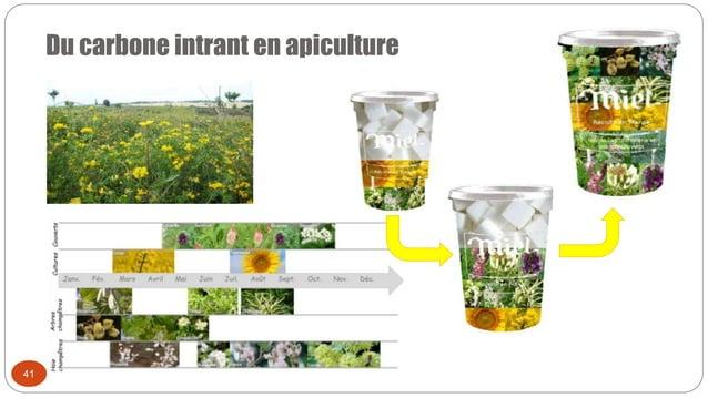 Du carbone intrant en apiculture 41