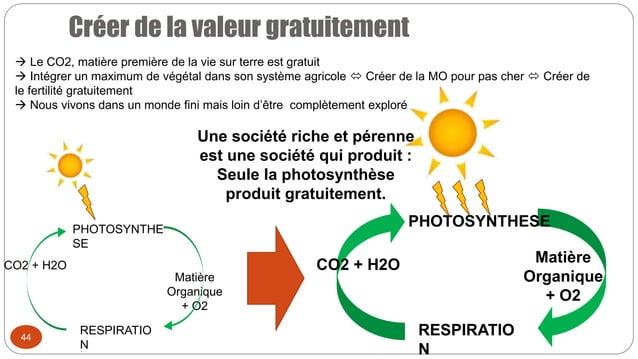 Créer de la valeur gratuitement 44 PHOTOSYNTHE SE RESPIRATIO N Matière Organique + O2 CO2 + H2O PHOTOSYNTHESE RESPIRATIO N...
