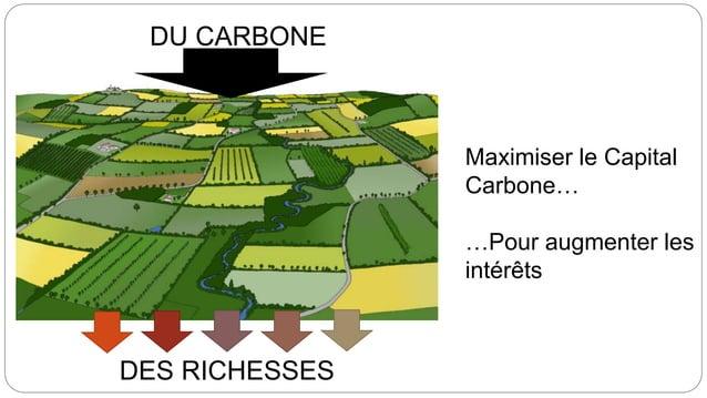 DU CARBONE DES RICHESSES Maximiser le Capital Carbone… …Pour augmenter les intérêts