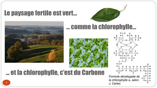 Le paysage fertile est vert… 5 … comme la chlorophylle… … et la chlorophylle, c'est du Carbone Formule développée de la ch...