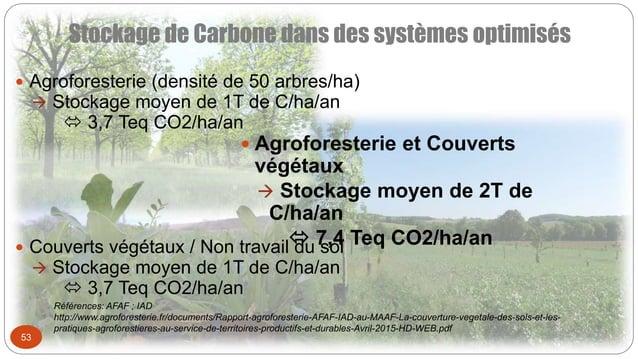 Stockage de Carbone dans des systèmes optimisés 53  Agroforesterie (densité de 50 arbres/ha)  Stockage moyen de 1T de C/...