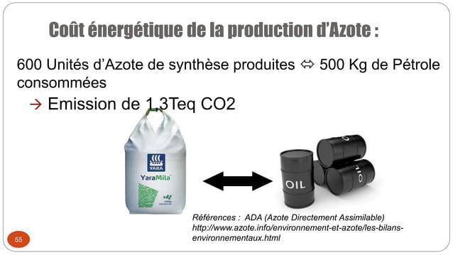 Coût énergétique de la production d'Azote : 55 600 Unités d'Azote de synthèse produites  500 Kg de Pétrole consommées  E...