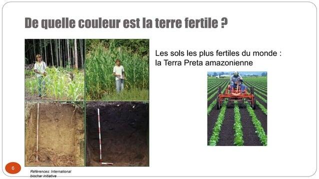 De quelle couleur est la terre fertile ? 6 Les sols les plus fertiles du monde : la Terra Preta amazonienne Références: In...