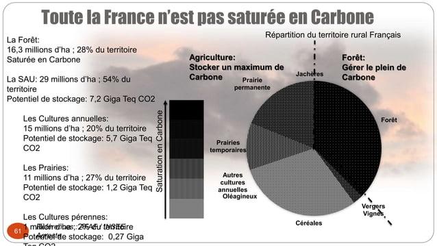 Toute la France n'est pas saturée en Carbone 61 Forêt Vergers Vignes Céréales Oléagineux Autres cultures annuelles Prairie...