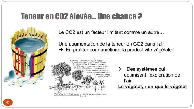 Teneur en CO2 élevée… Une chance ? 63 Le CO2 est un facteur limitant comme un autre… Une augmentation de la teneur en CO2 ...