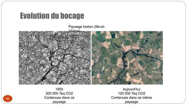66 Evolution du bocage 1950 300 000 Teq CO2 Contenues dans ce paysage Paysage breton (Ille-et- Vilaine) Aujourd'hui 120 00...