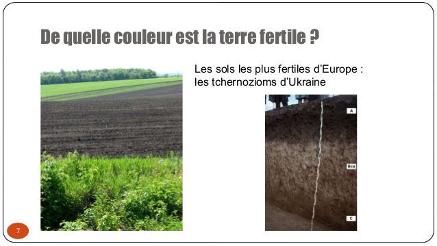 De quelle couleur est la terre fertile ? 7 Les sols les plus fertiles d'Europe : les tchernozioms d'Ukraine