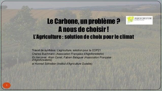 Le Carbone, un problème ? A nous de choisir ! L'Agriculture : solution de choix pour le climat 1 Travail de synthèse: L'ag...