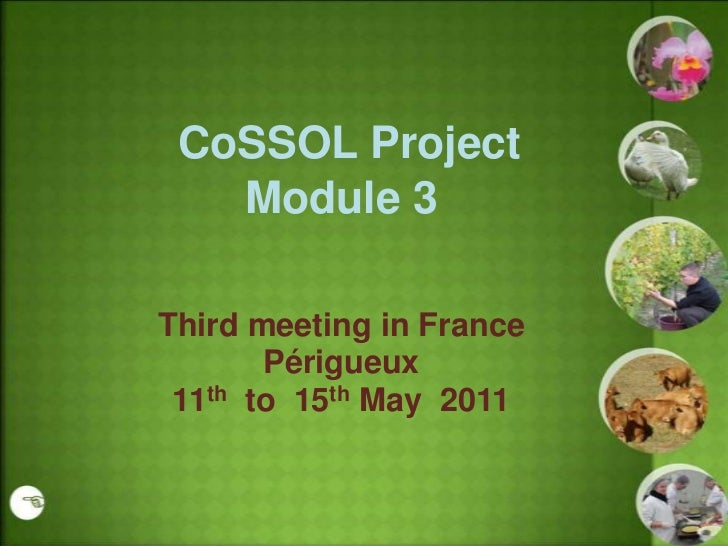 CoSSOL Project   Module 3Third meeting in France       Périgueux 11th to 15th May 2011