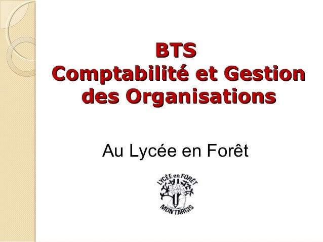 BTS Comptabilité et Gestion des Organisations Au Lycée en Forêt