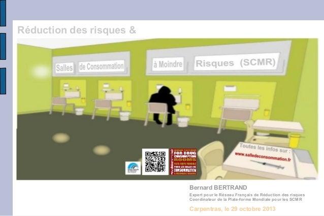 Réduction des risques &  Bernard BERTRAND Expert pour le Réseau Français de Réduction des risques Coordinateur de la Plate...