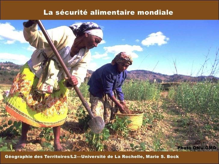La sécurité alimentaire mondiale Géographie des Territoires/L2—Université de La Rochelle, Marie S. Bock Photo ONU/OMD