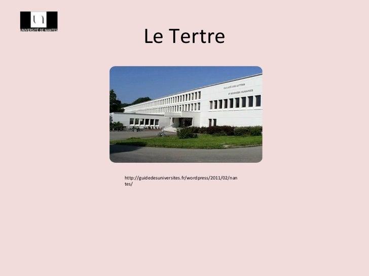 Le Tertre http://guidedesuniversites.fr/wordpress/2011/02/nantes/