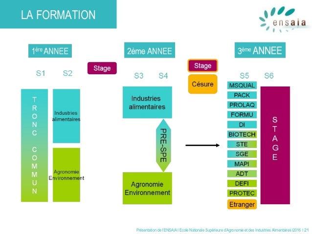 Présentation de l'ENSAIA I Ecole Nationale Supérieure d'Agronomie et des Industries Alimentaires I2016 I 21 LA FORMATION