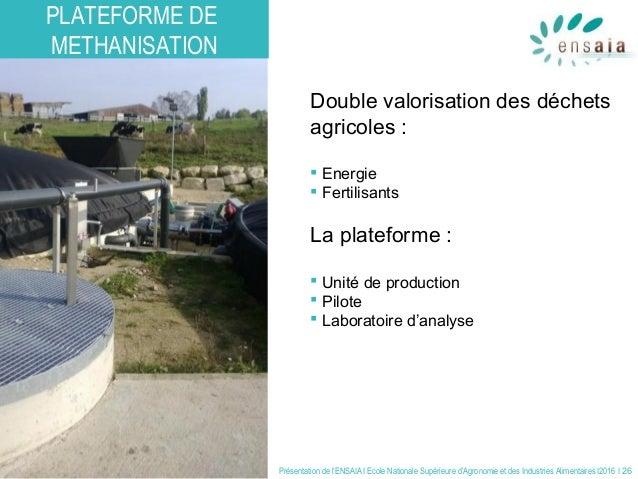 Présentation de l'ENSAIA I Ecole Nationale Supérieure d'Agronomie et des Industries Alimentaires I2016 I 26 Double valoris...