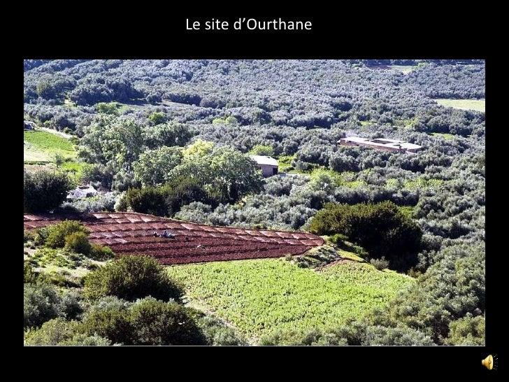"""Diaporama du  gîte """"Ourthane"""""""