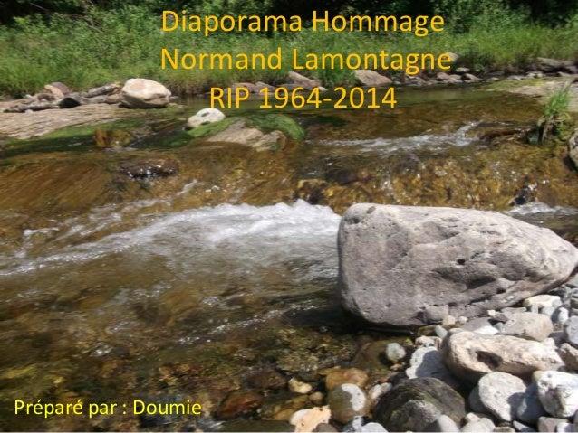Diaporama Hommage Normand Lamontagne RIP 1964-2014  Préparé par : Doumie