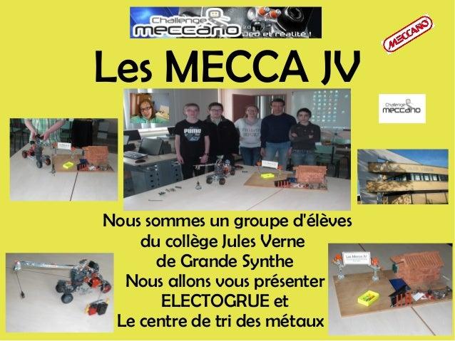 Nous sommes un groupe d'élèves du collège Jules Verne de Grande Synthe Nous allons vous présenter ELECTOGRUE et Le centre ...